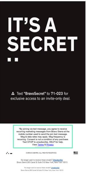 Secret Sale Email
